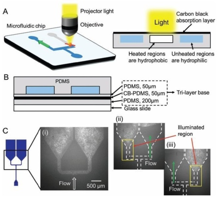 Light-Governed Capillary Flow in Microfluidic Systems