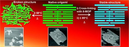 Photo-Cross-Linking-Assisted Thermal Stability of DNA Origami Structures and Its Application for Higher-Temperature Self-Assembly