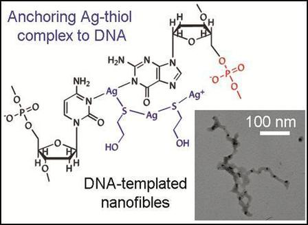 Just-Accepted Paper: Thiol-mediated DNA-templated silver nanofibers