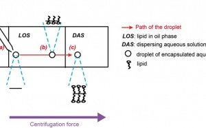A new method for vesicle formation by close monitoring of droplets crossing an oil/water interface is described.