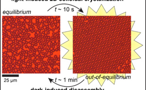 "Our new paper ""Photoswitchable dissipative two‐dimensional colloidal crystals"" accepted for publication in Angewandte!"