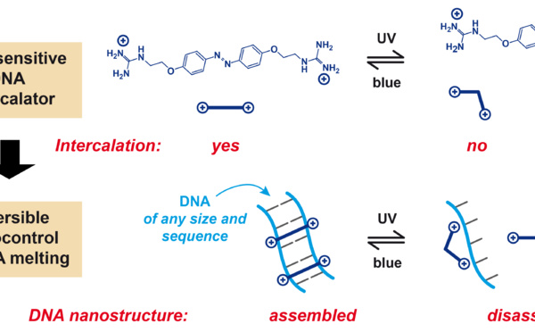 Photocontrol of DNA melting/hybridization at constant temperature accepted in Nano Letters!