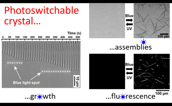 "Our new paper ""Photoswitchable fluorescent crystals obtained by the photoreversible co-assembly of a nucleobase and an azobenzene intercalator"" accepted in JACS!"