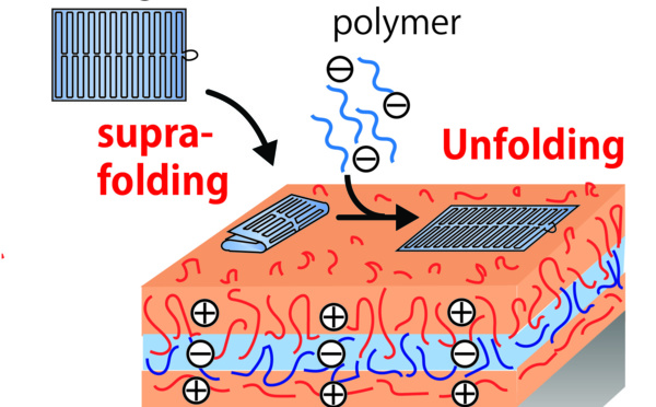 """Our paper """"Reversible supra-folding of user-programmed functional DNA nanostructures on fuzzy cationic substrates"""" has just been accepted in Angewandte Chemie."""