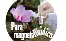 Paramagnetofluidics as Angewandte Cover!