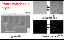 """Our new paper """"Photoswitchable fluorescent crystals obtained by the photoreversible co-assembly of a nucleobase and an azobenzene intercalator"""" accepted in JACS!"""